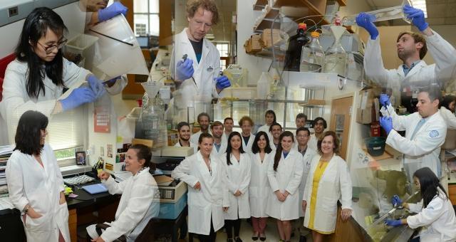 Gudas Lab